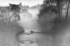 Bas van Laarhoven Photography  Fotografie workshop