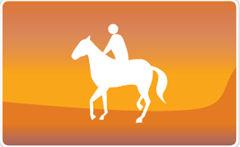 Brabant is een echte paardenprovincie. Veel mensen rijden begeleide tochten vanuit maneges en stallen. Maar soms wil je er alleen op uit.