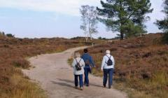 Routes in Brabant Wandelroutes